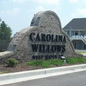 Carolina Willows